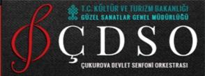 ÇDSO-logo